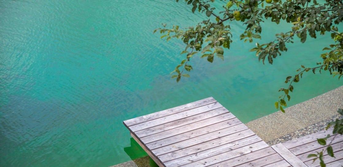 Naturschwimmteich beim Loft