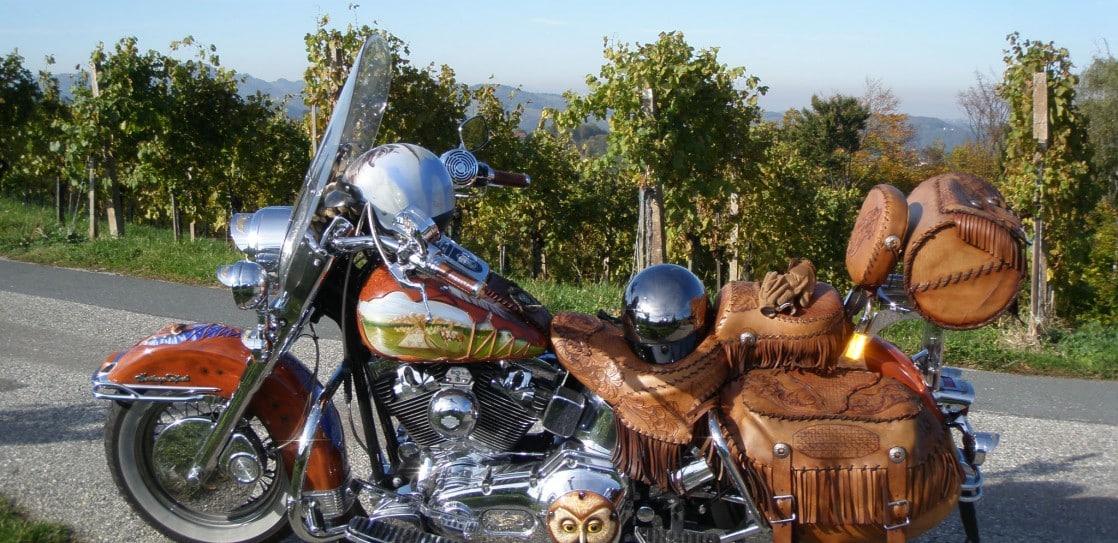 Harleytour über die lieblichen Weinberge