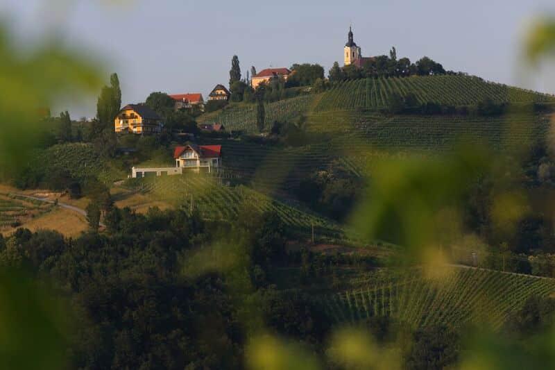 Kitzeck Ort Weinberge Blick über Hügel